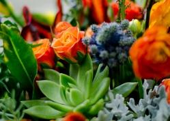 Florist_0072-2826278466-O